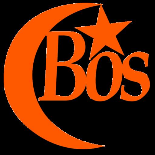 bosphoruscymbals.com